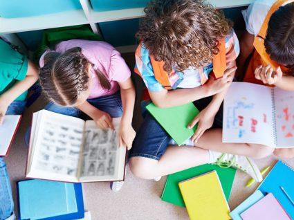 Manuais escolares gratuitos em 2019/2020: como obter os seus