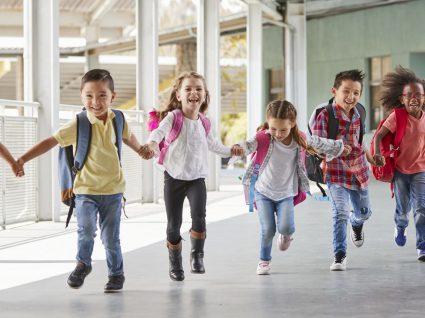 Emprego em escolas: conheça os concursos a decorrer