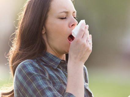 Alerta: níveis muito elevados de pólenes nos próximos dias