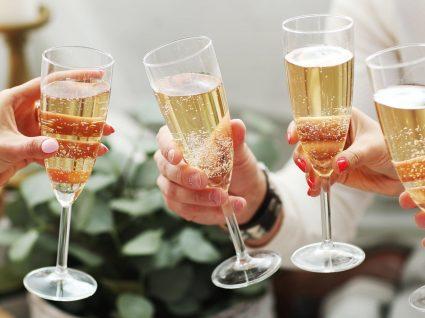 Rota da Bairrada: vinhos, gastronomia e paisagens
