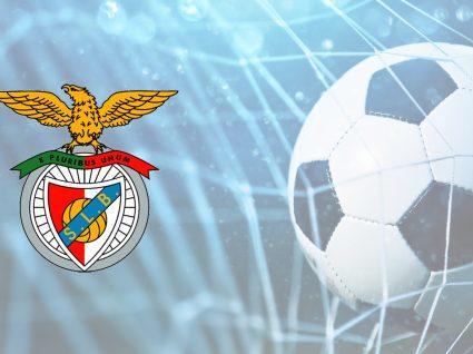 Já pensou em treinar o Benfica? Esta pode ser a sua oportunidade