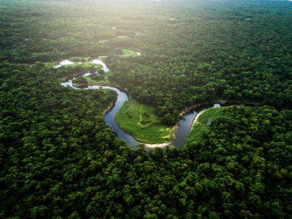 Amazónia, a viagem que deve fazer uma vez na vida