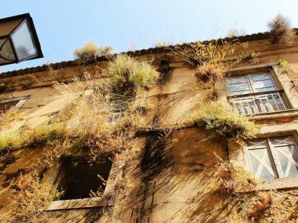 O que muda no IMI dos prédios devolutos e quais as taxas aplicáveis