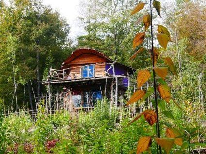 Viver numa eco-aldeia durante 10 dias