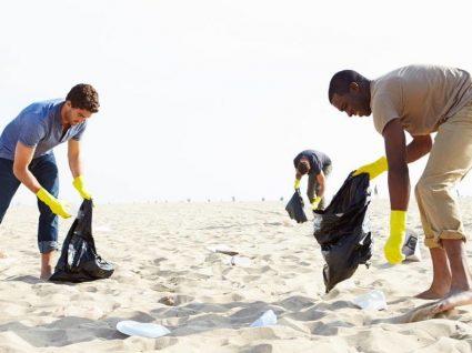 Sea Life Porto procura voluntários para limpar as praias