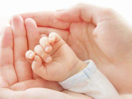 Criopreservação de células estaminais: a prevenção que pode valer vidas