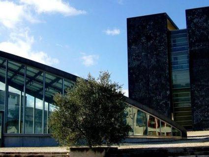 Faculdade de Medicina Dentária da Universidade de Lisboa está a recrutar