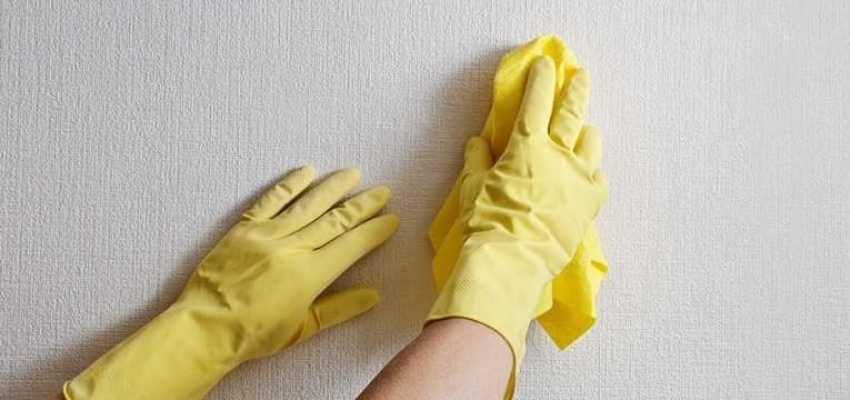 como limpar o bolor nas paredes