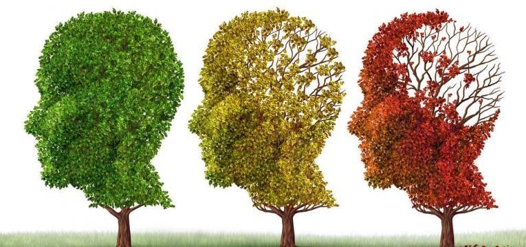 défice cognitivo pode levar à demência