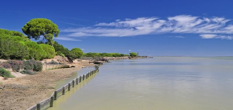 Praia Doñana