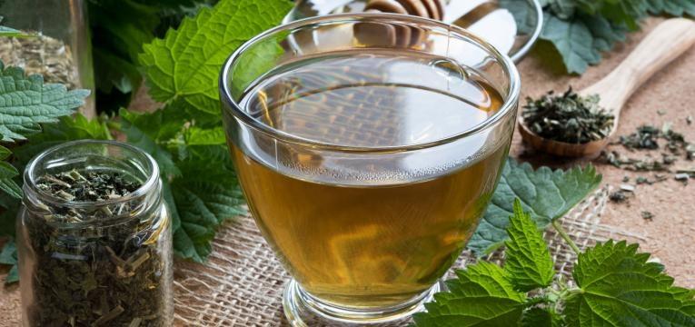 o chá de urtiga é um bom chá para a tosse