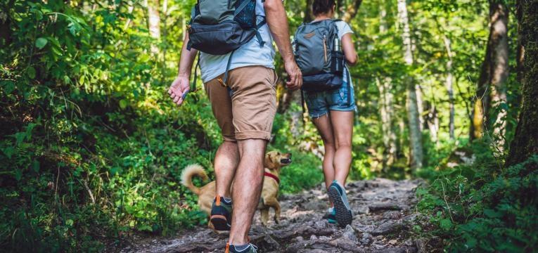 conheça todos os benefícios da caminhada