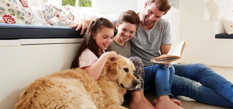 como escolher cão ou cadela