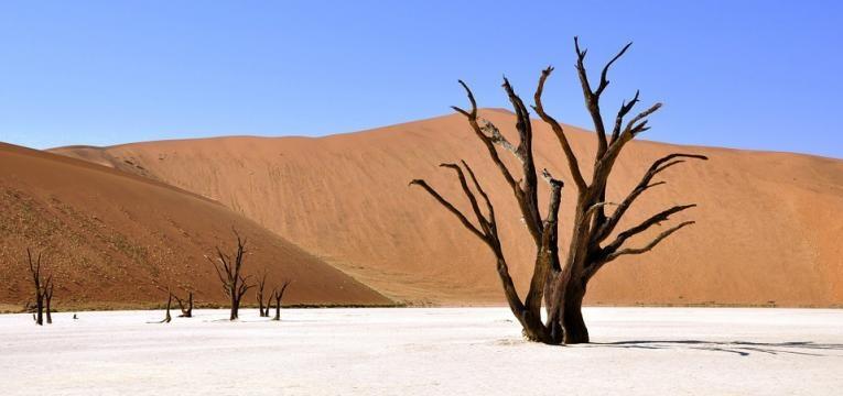 Deadvlei, Namíbia