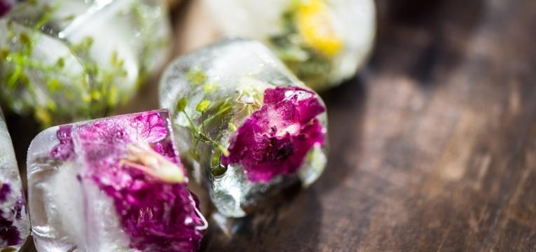 cubos de gelo e flores