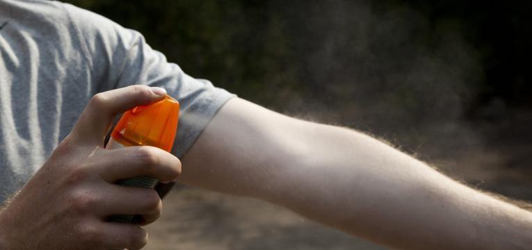 Como evitar as picadas de mosquito?