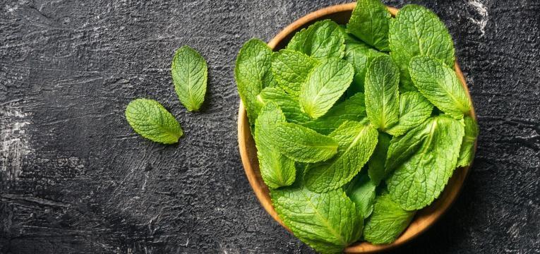 ervas aromaticas hortela