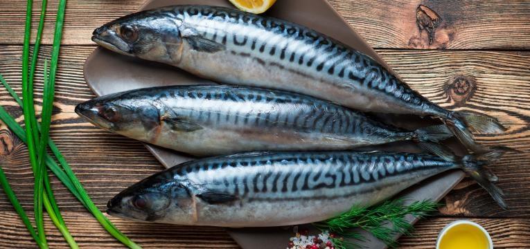 se quer saber o que comer para emagrecer não se esqueça do peixe