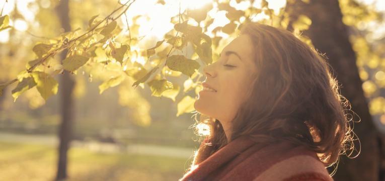 Apanhar sol ajuda a combater o jet lag