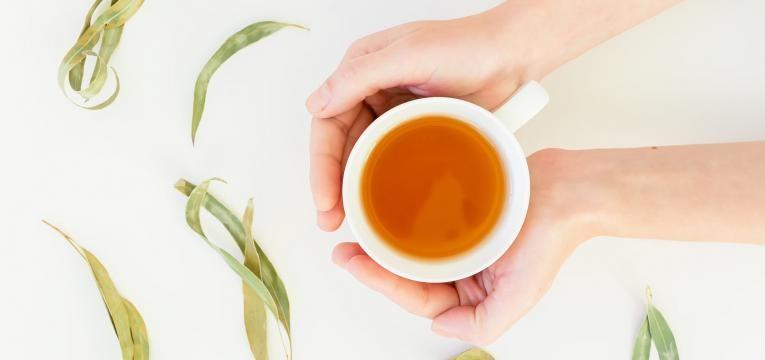 chá de eucalipto para a gripe