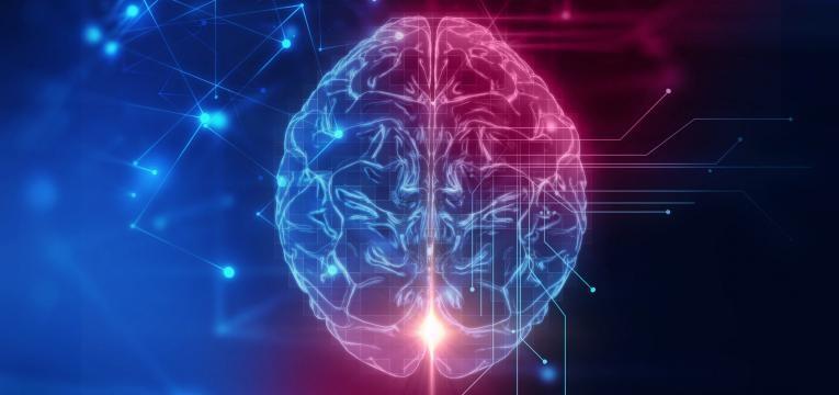 efeitos do stress no cérebro