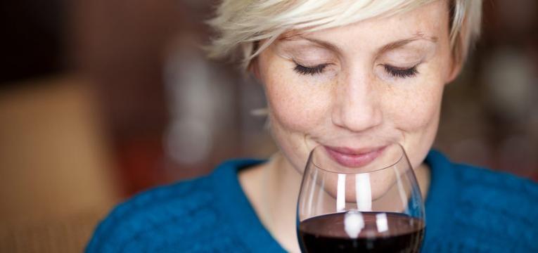 festival de vinhos e gastronomia