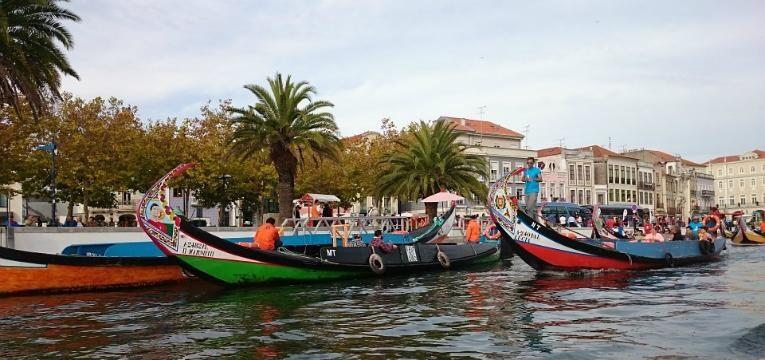 Moliceiros na ria de Aveiro