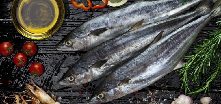 peixe fresco fresh fish