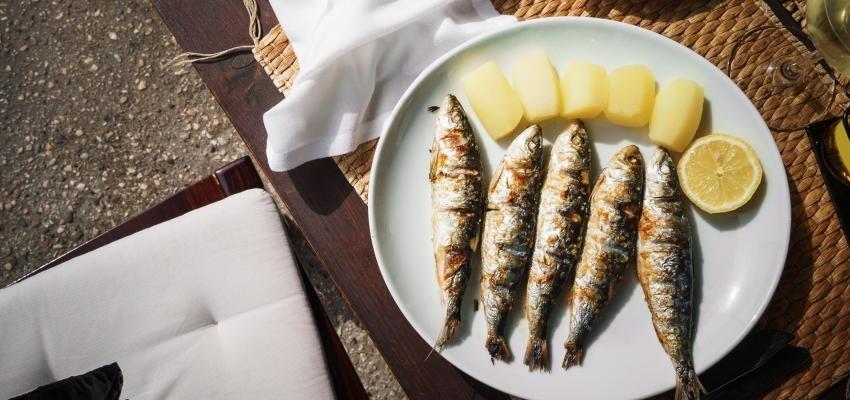 Resultado de imagem para site: e-konomista.pt sardinhas