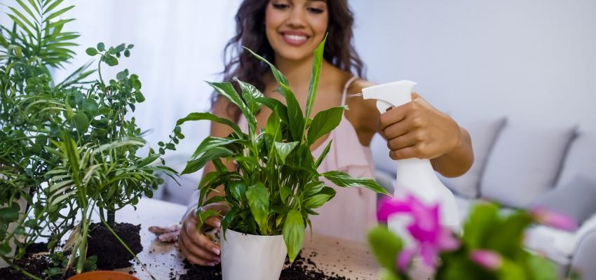 mulher a regar plantas