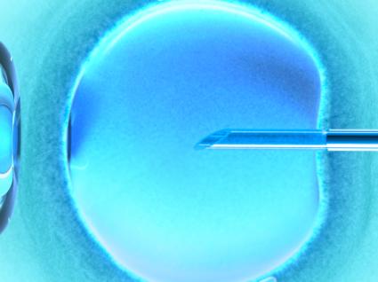 Fertilização in vitro: conheça todas as etapas deste tratamento