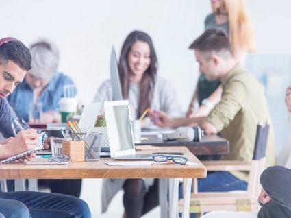 Cultura da empresa: como pode definir o sucesso num novo trabalho