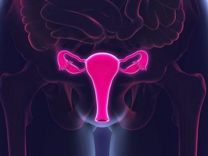 Cancro do ovário de A a Z