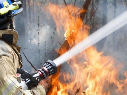 As 20 zonas do país com mais risco de incêndio