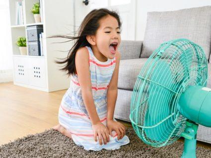 Como escolher a ventoinha ideal