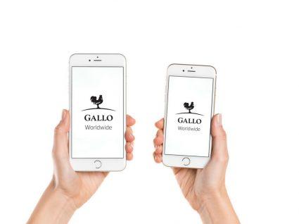 Gallo Worldwide procura técnico de produção