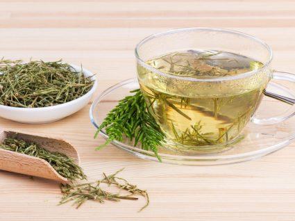 Chá de cavalinha: descubra os benefícios