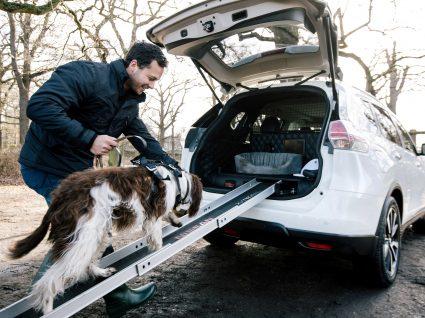 Nissan estuda carro que é um luxo para os cães