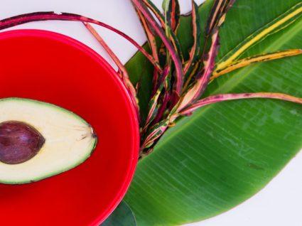 10 boas razões para comer a semente de abacate