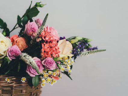 Conheça o significado das flores para presentear e decorar a casa