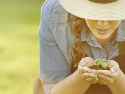 5 benefícios terapêuticos da jardinagem