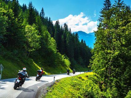 Xisto de mota: uma aventura pelo verde da Serra da Lousã