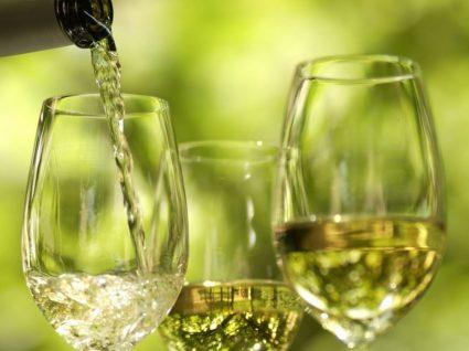 Os melhores vinhos brancos do mercado