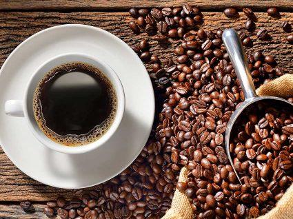 8 curiosidades imperdíveis para apaixonados por café