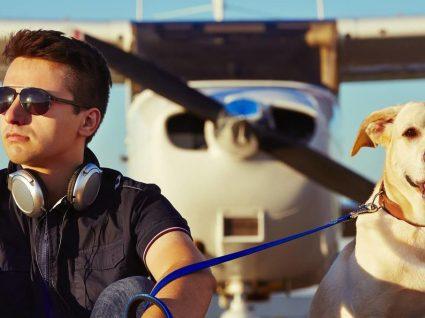 Esta é a companhia aérea mais pet friendly do mundo