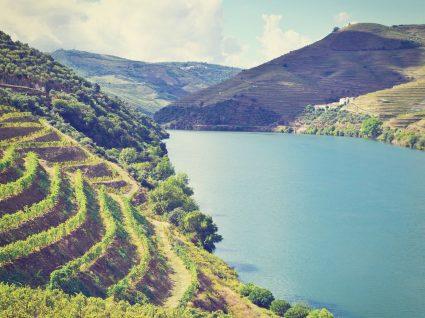 5 casas com piscina no Douro para alugar já