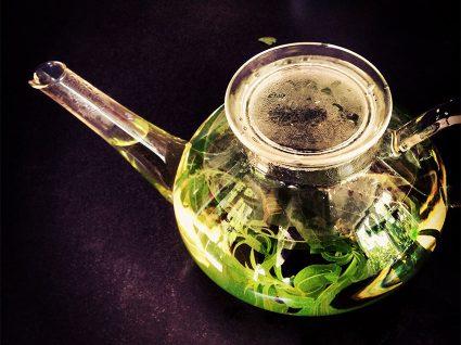 Chá de lúcia-lima: para a dor de cabeça ou insónias