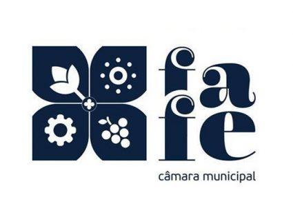 Câmara Municipal de Fafe está a contratar