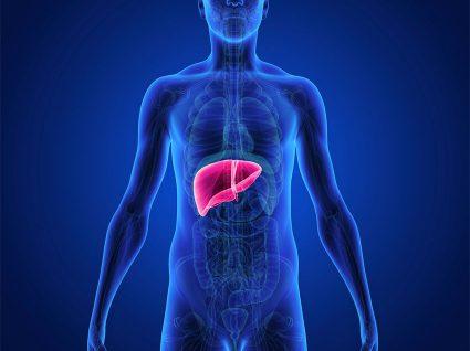 Colangite: a doença do fígado