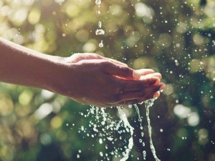 Como reduzir o consumo de água: 10 dicas que podem ajudar